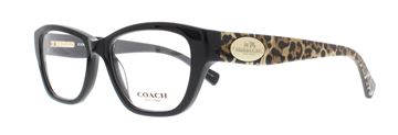 Picture of Coach HC6070