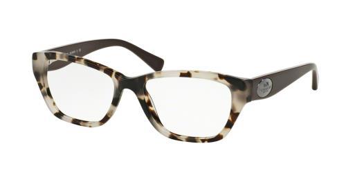 5325 Snow Leopard Tortoise/Brown