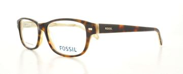 Picture of Fossil CEYLA