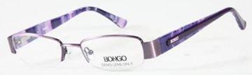 Picture of Bongo B ALEXIS