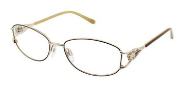 Picture of Clearvision AVIA