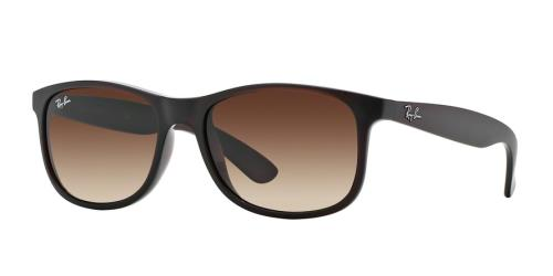 Picture of Ray Ban RB4202 Andy