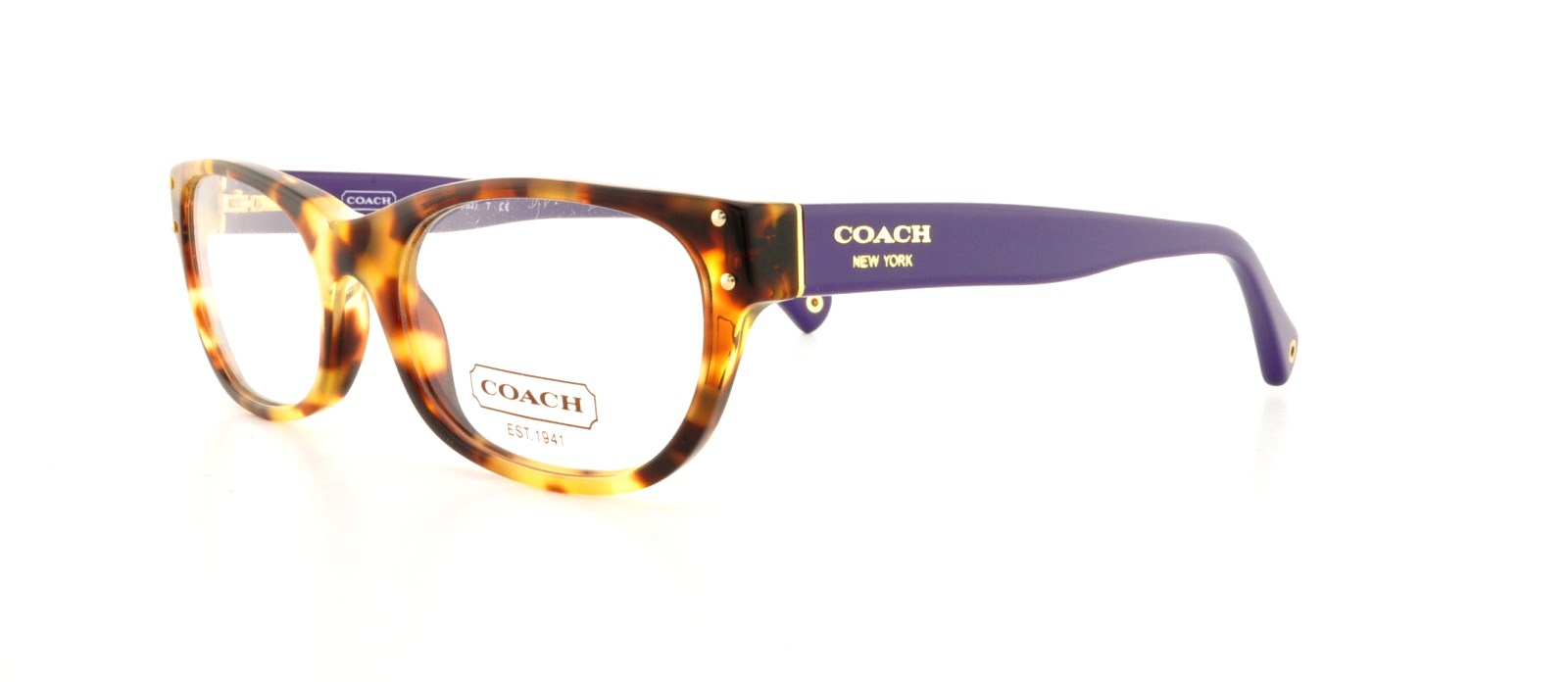 Picture of Coach HC6034