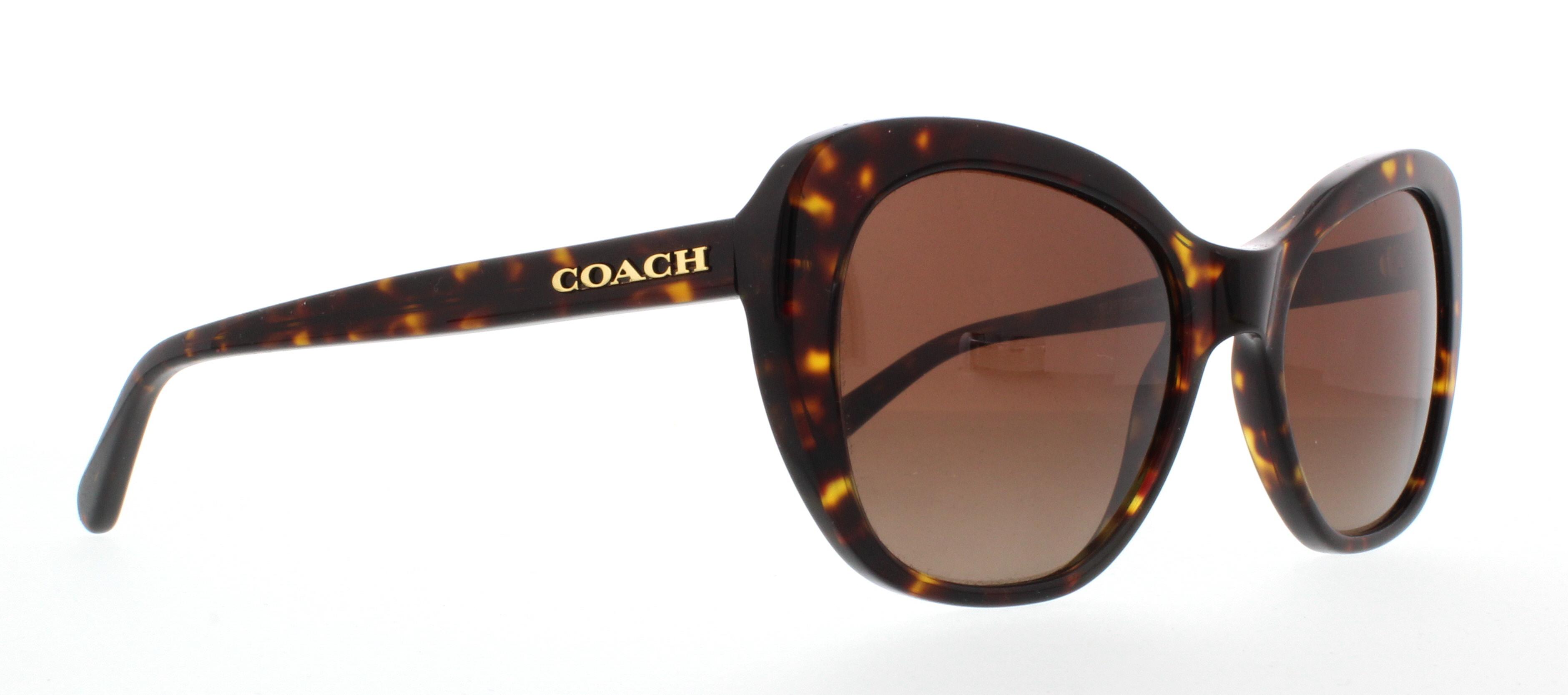 46cbc98fc3 Designer Frames Outlet. Coach HC8204 L1631
