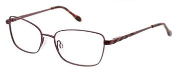 Picture of Cvo Eyewear CLEARVISION LEONORA