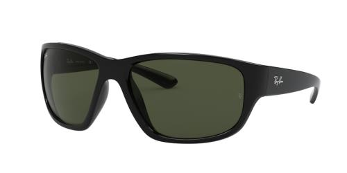 Picture of Ray Ban RB4300