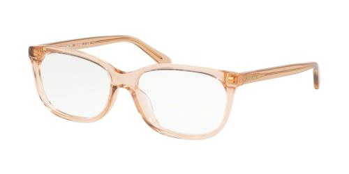5561 Transparent Light Brown