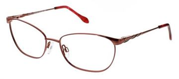 Picture of Cvo Eyewear CLEARVISION DARLENE