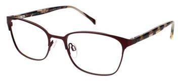 Picture of Cvo Eyewear ANAHEIM
