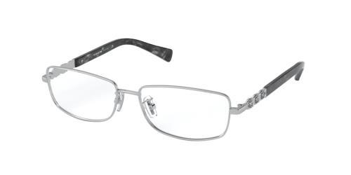 9001 Shiny Silver