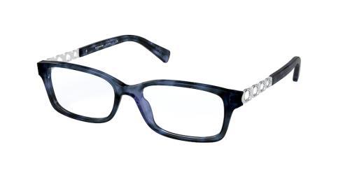 5593 Blue Tortoise