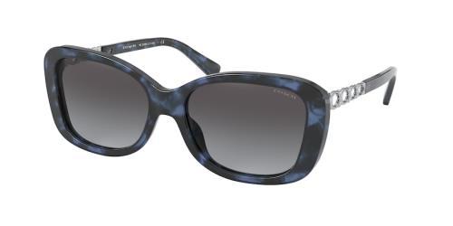 55938G Blue Tortoise