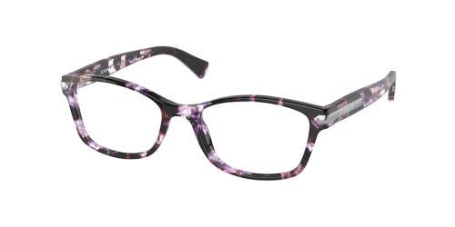 5548 Purple Tortoise